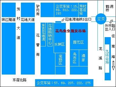 广州鱼市地图 芳村花地湾花鸟鱼虫市场中国兰寿网