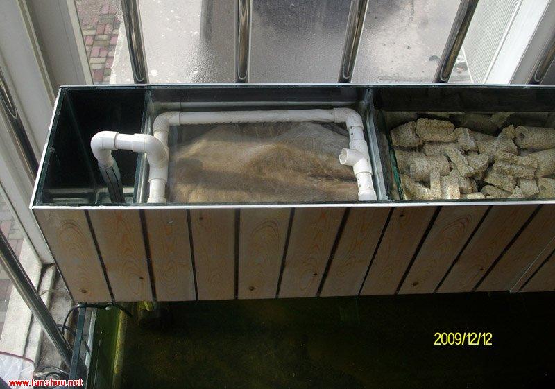 養錦鯉的過濾系統【相關詞_ 缸養錦鯉過濾系統圖】圖片